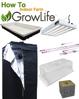GrowLife Cube Micro Package